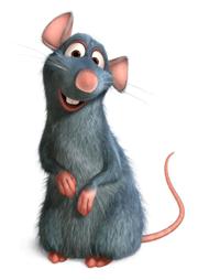 expresiones-espanol-ser-rata