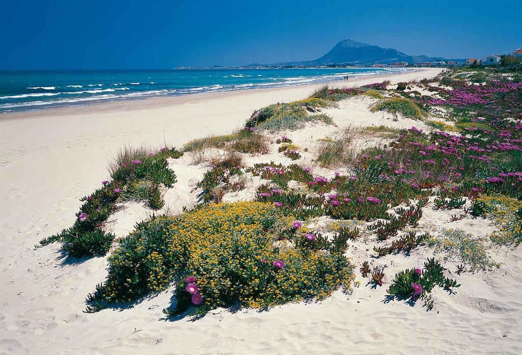 Playa de arena en Denia